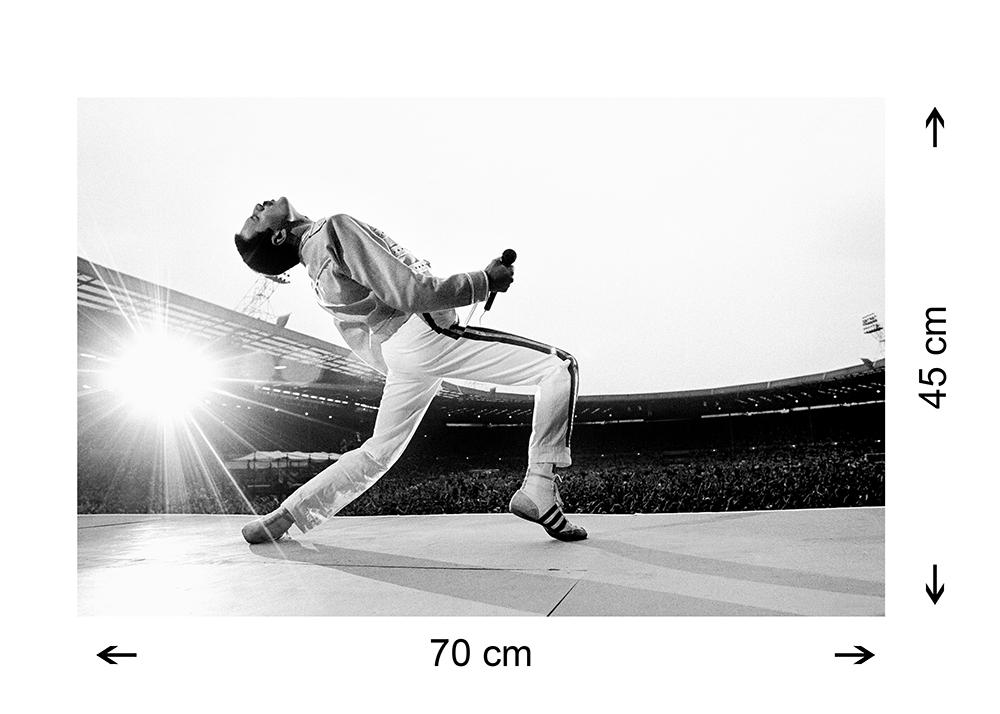 Quadro Tela Canvas Freddie Mercury Wembley 70x45cm