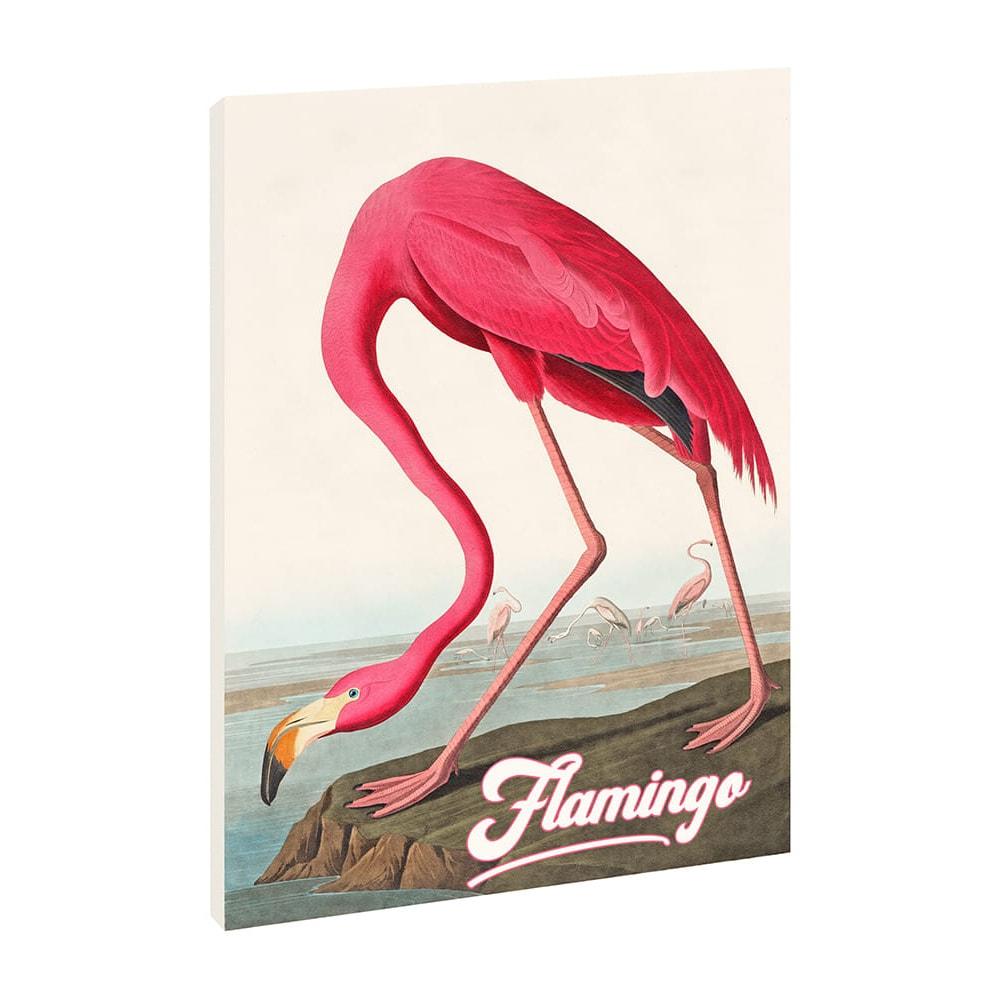 Quadro su Tela Canvas - Fenicottero Vintage 50x72 cm - Flamingo - Verticale